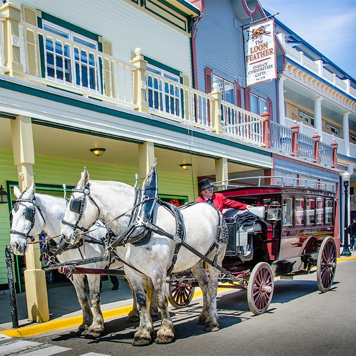 horse-drawn carriage in Mackinac Island