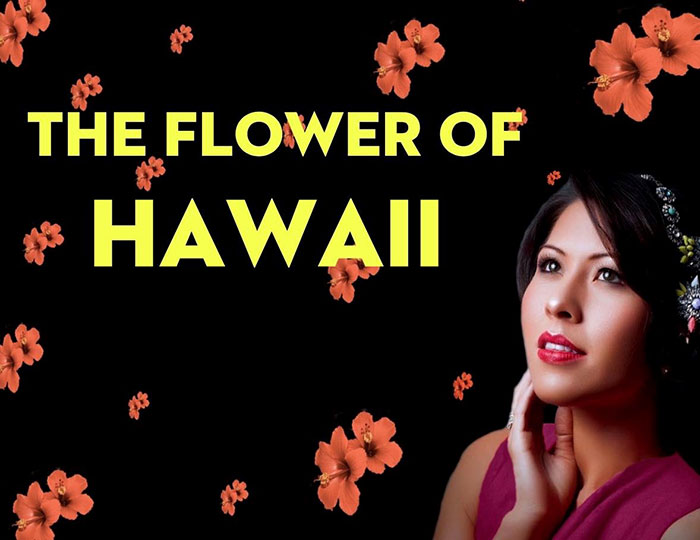 $10 Off Tickets on Folks Operetta's The Flower of Hawaii