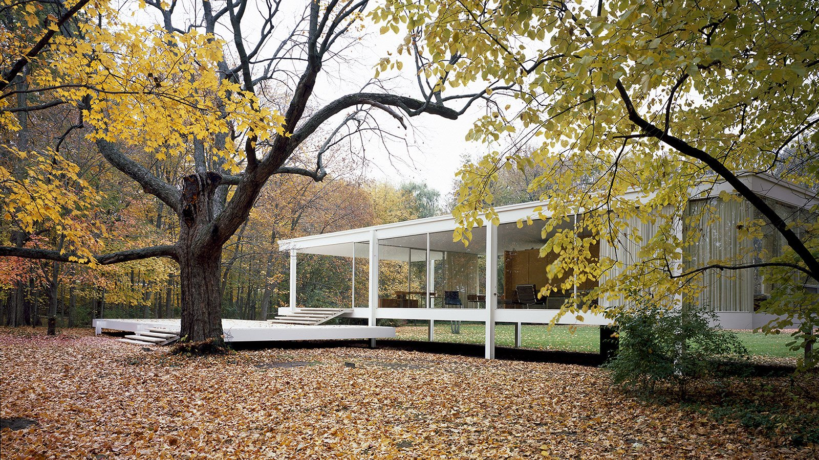 the farnsworth house wttw chicago public media television and interactive. Black Bedroom Furniture Sets. Home Design Ideas