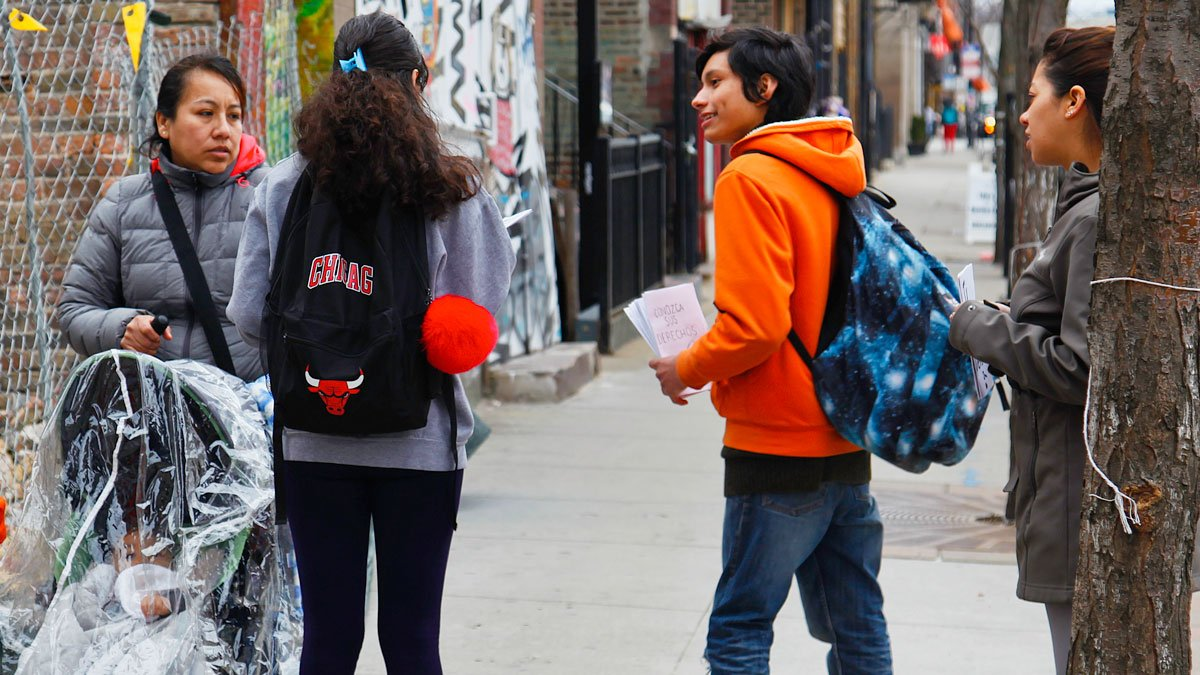 Student groups pass out Know Your Rights pamphlets in Pilsen