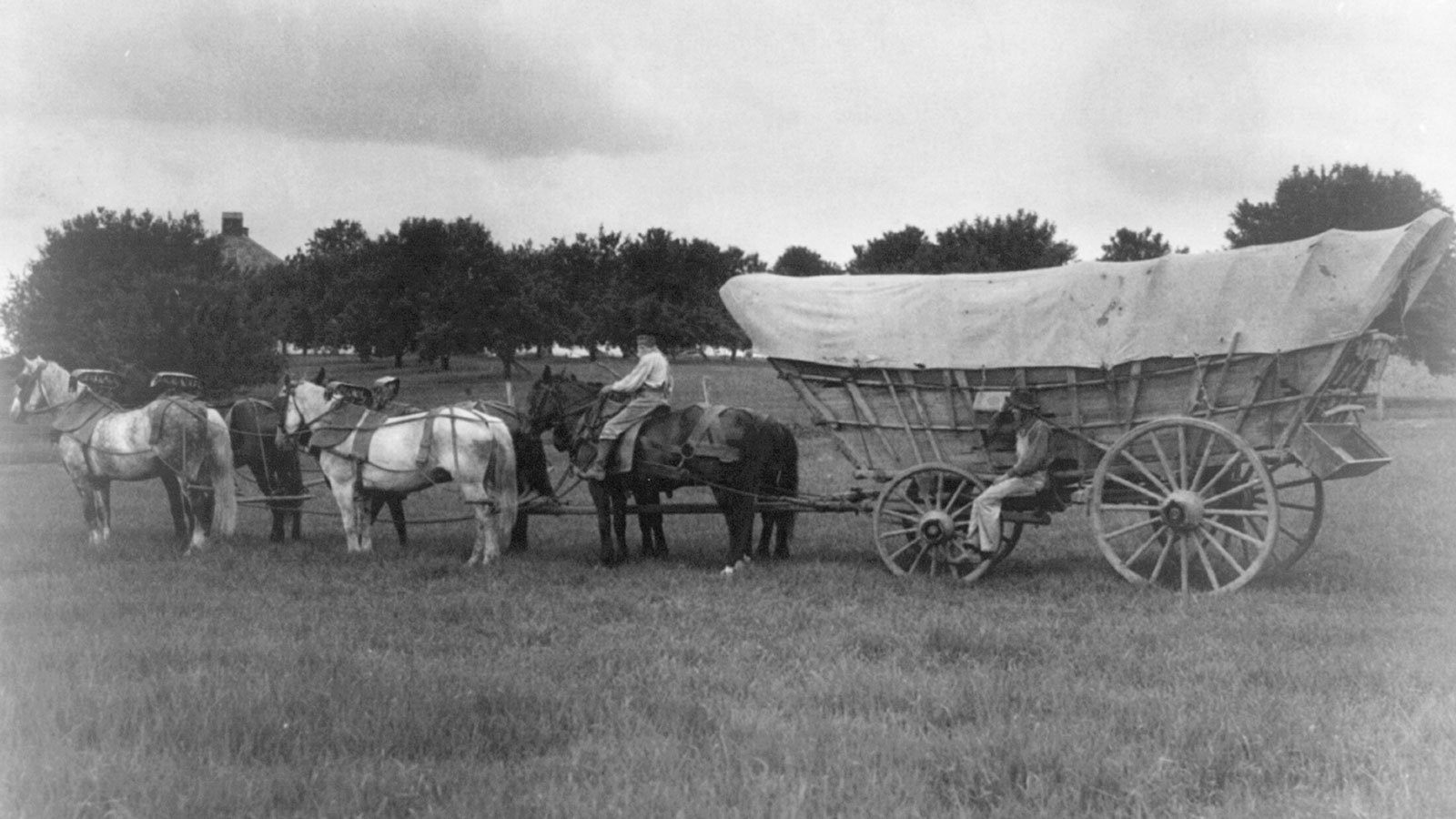 Conestoga wagon was used for carrying freight on the National Pike