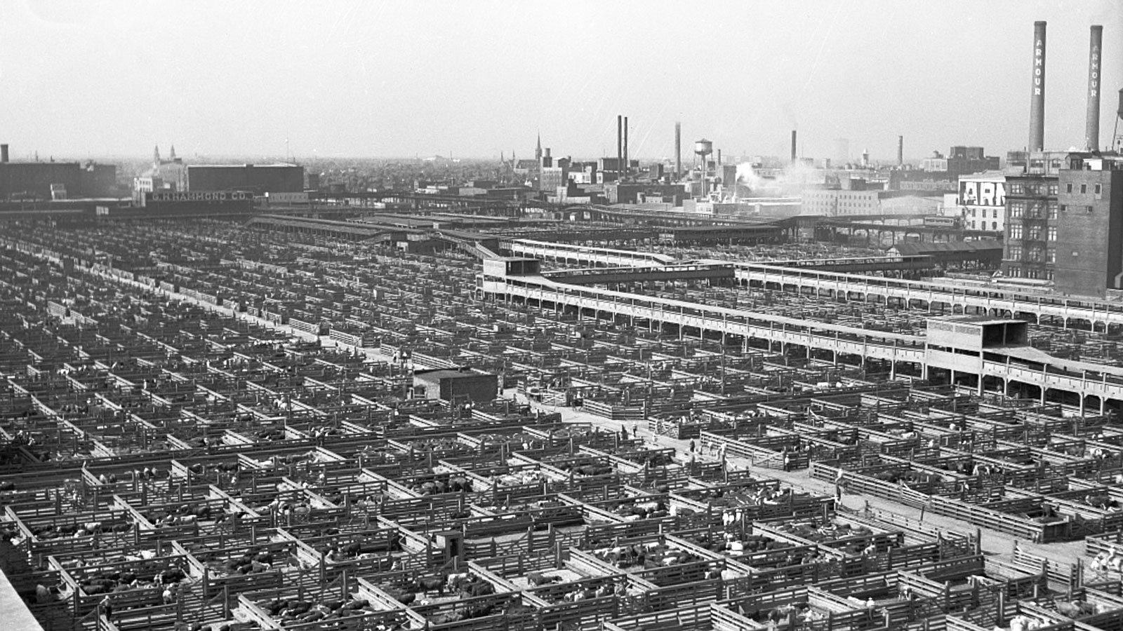 Union Stock Yards historical photo