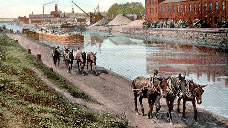 When Mules Ruled the Canal