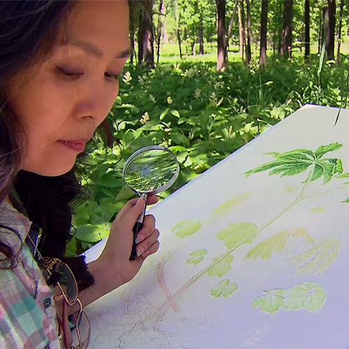 Plant Painter