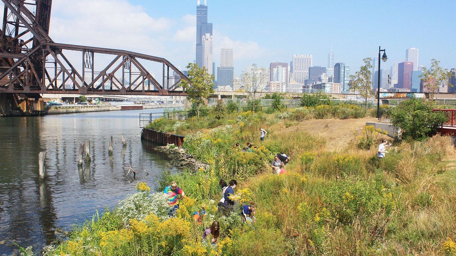 Chicago River cleanup