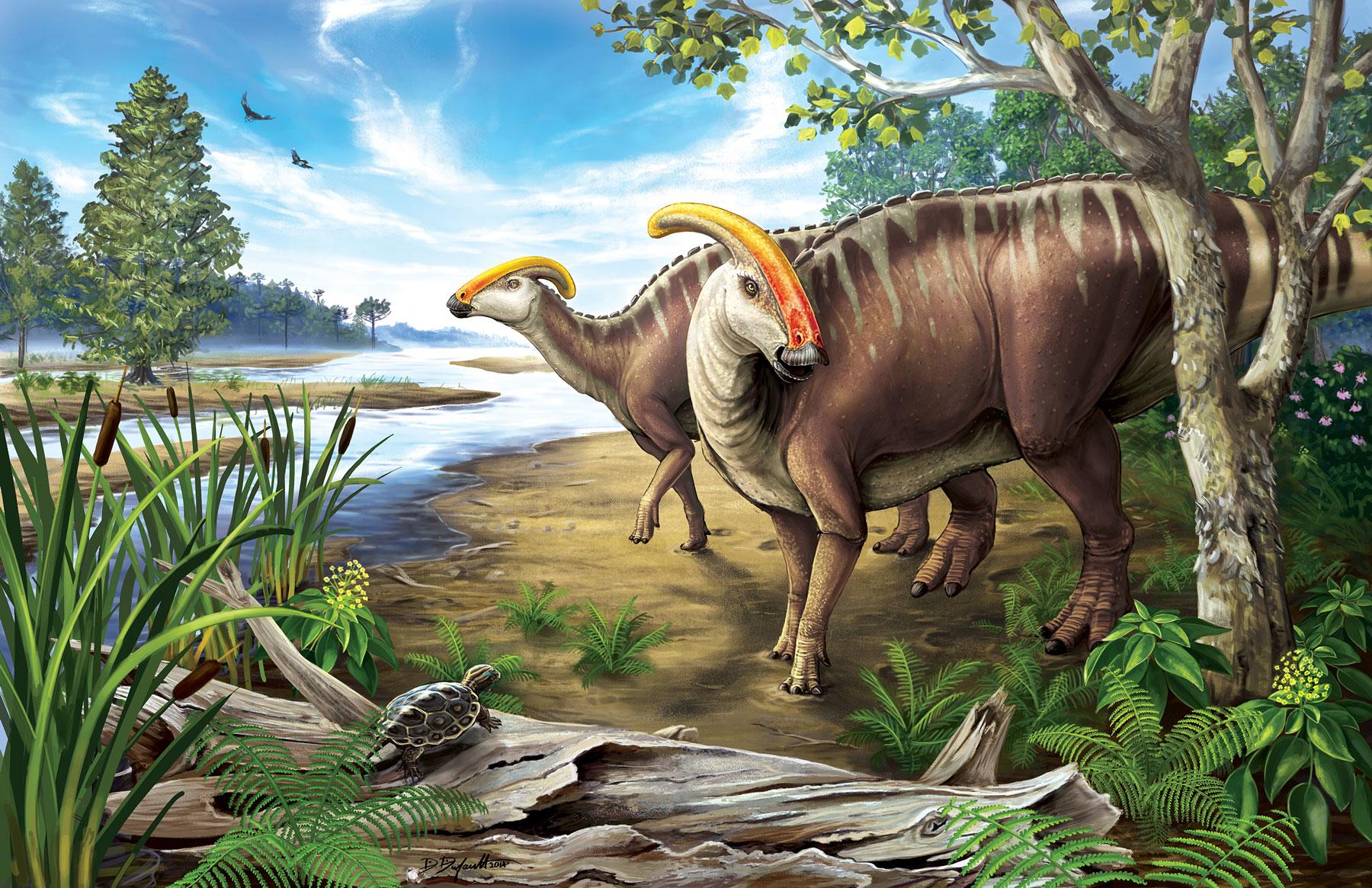 Parasaurolophus art