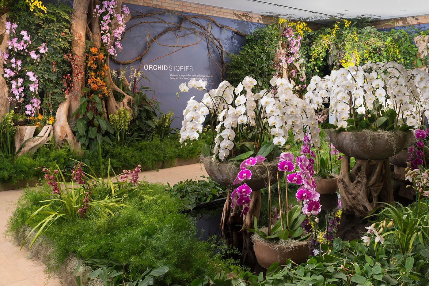 Photo: Chicago Botanic Garden ...