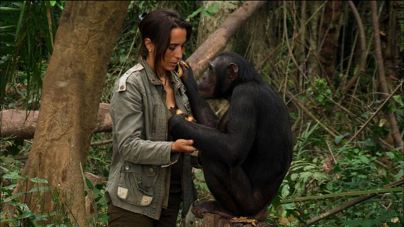 Dr. Rebeca Atencia with the chimpanzee Kudia. Photo: Tigress Productions