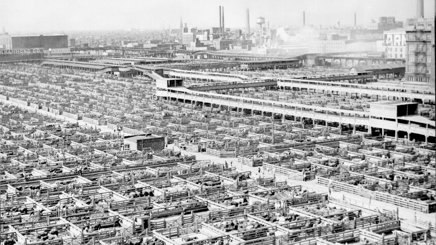 Chicago's Union Stock Yards in 1947