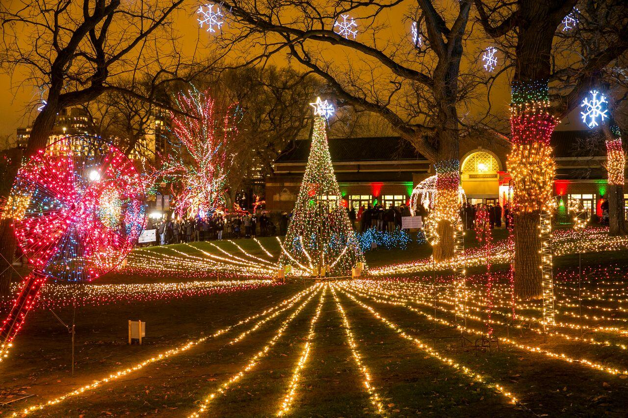 ZooLights. Photo: Lincoln Park Zoo