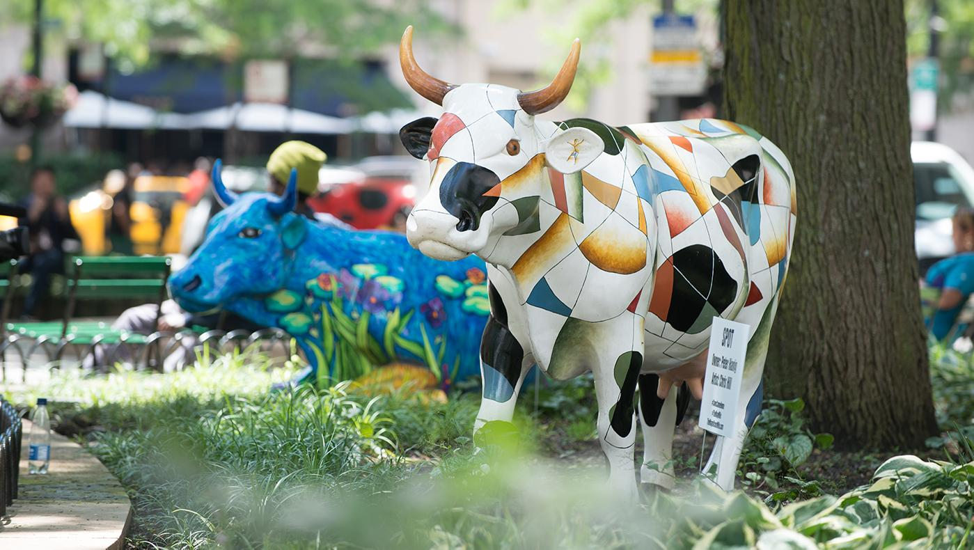 Cows Come Home on the Magnificent Mile. Photo: LaCour Images, courtesy of The Magnificent Mile Association