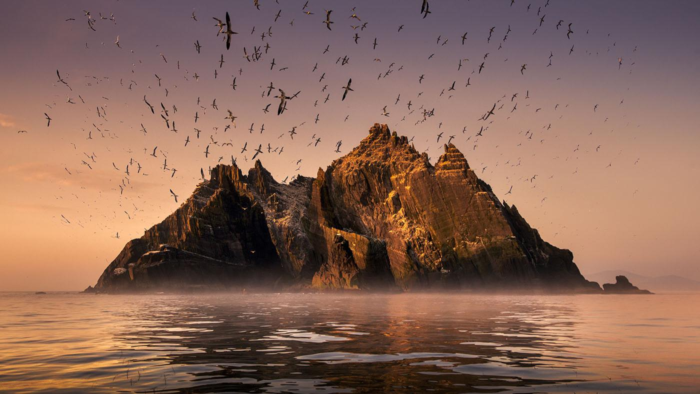 The island of Little Skellig, home to a large colony of northern gannet birds. Photo: George Karbus