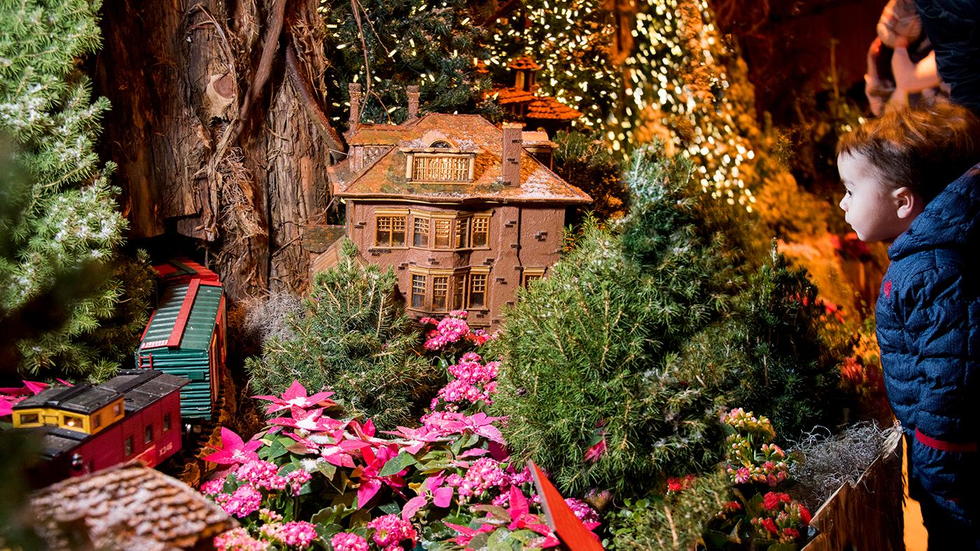 The Chicago Botanic Garden's Wonderland Express exhibition. Photo: Chicago Botanic Garden