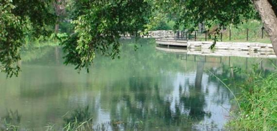 A lagoon in Chicago's Gompers Park