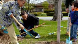 Children planting a tree